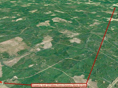 1 Acre Lot On Open Louisiana Land : Bienville : Louisiana