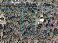 Great 1 Acre Lot 775037 : Chiefland : Levy County : Florida