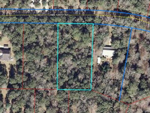 Reduced Great 1 Acre Lot 775037 : Chiefland : Levy County : Florida