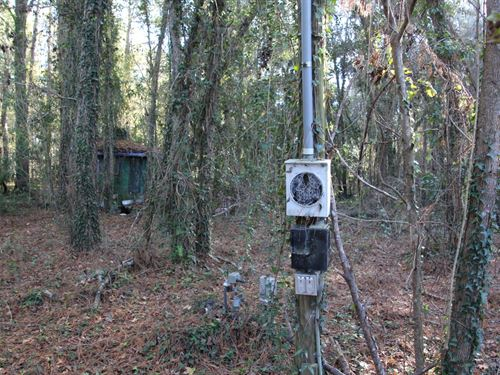 Wonderful Location - High And Dry : Alachua : Florida