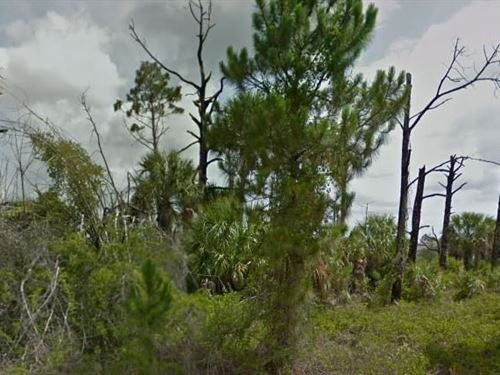 Brevard County, Fl $70,000 Neg : Palm Bay : Brevard County : Florida