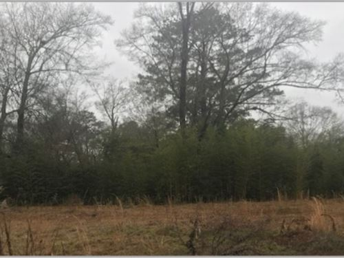 Lot 8 In Forrest County In Cane Par : Hattiesburg : Forrest County : Mississippi
