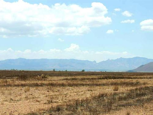 .5 Acres In Willcox, AZ : Willcox : Cochise County : Arizona