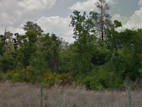Highlands County, Fl $20,000 Neg : Avon Park : Highlands County : Florida
