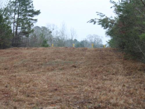 1.4 Acres In Jones County, Ms : Taylorsville : Jones County : Mississippi