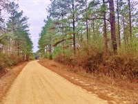 Land For Sale Near Brookhaven, Linc : Wesson : Lincoln County : Mississippi