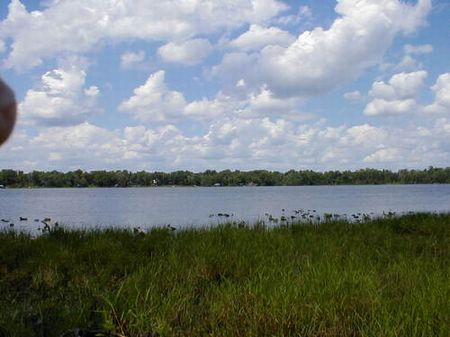 15 Acres On  Lake Jeffords (cl-075) : Hawthorne : Alachua County : Florida