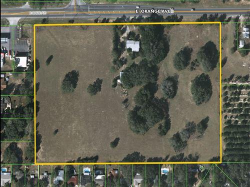 Residential Development Land : Eustis : Lake County : Florida