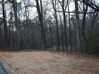 1+/- Acre Lot In Shadow Lakes : Spartanburg : Spartanburg County : South Carolina