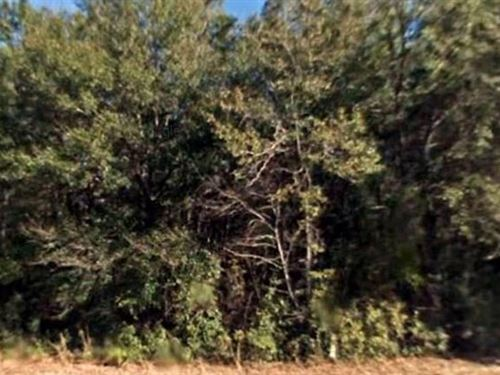Suwannee County, Fl $77,000 Neg : Live Oak : Suwannee County : Florida