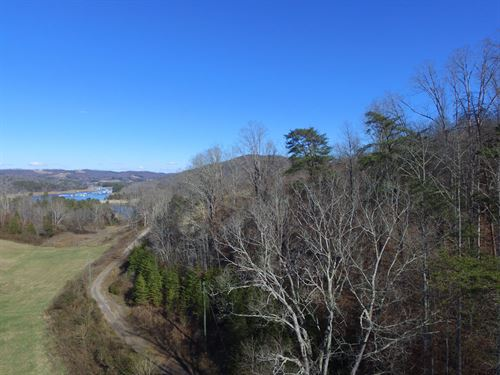 10+ Acre Norris Lake View Lot : Maynardville : Union County : Tennessee