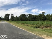 McKoy Road Lot 3 : Clarkton : Bladen County : North Carolina