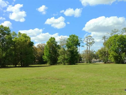 Woodfield Estates - Lot 4 : Ocala : Marion County : Florida