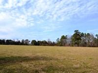 Oliver Lot : Montgomery : Montgomery County : Alabama