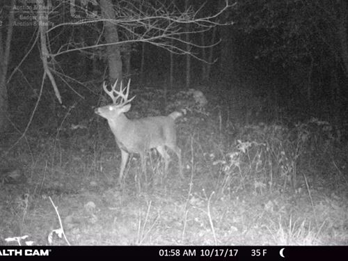 Buck Creek Hunting Camp : Ferryville : Crawford County : Wisconsin