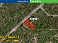 .5+/- Ac Wooded Lot : Crystal River : Citrus County : Florida