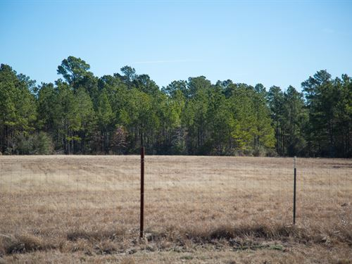 4.6 Ac Tract 2 Dawson Hill : Huntsville : Walker County : Texas