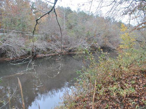 Tallapoosa River Lot 10 : Muscadine : Cleburne County : Alabama