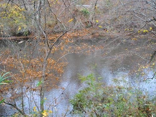 Tallapoosa River Lot 11 : Muscadine : Cleburne County : Alabama