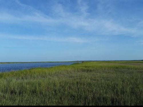 Waterfront Land For Sale With View : Waverly : Camden County : Georgia