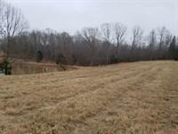 Acreage Ready For Horses : Cedar Grove : Carroll County : Tennessee