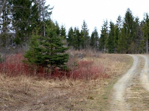 Maine, Aroostook County : Mars Hill : Aroostook County : Maine