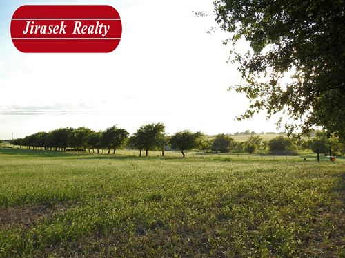 12.223 Ac, Franklin Rd, Troy : Troy : Bell County : Texas