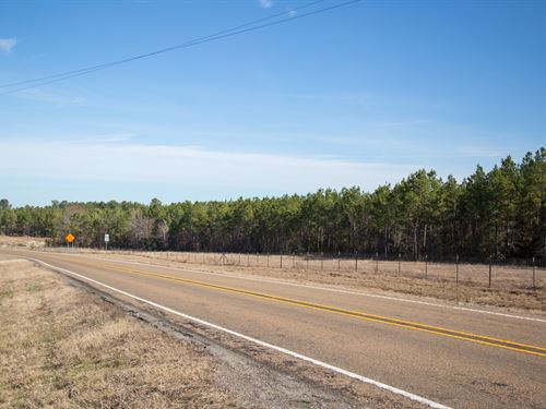 11.4 Ac Tract 3 Dawson Hill : Huntsville : Walker County : Texas