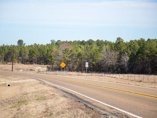 6 Ac Fm 3179 : Huntsville : Walker County : Texas