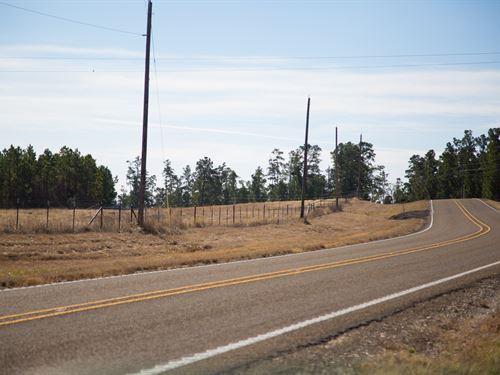 6.5 Ac Fm 3179 : Huntsville : Walker County : Texas