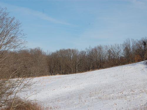 Moravian Trail - 11 Acres : Urichsville : Harrison County : Ohio