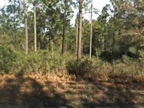 St. Johns County, Fl $25,000 Neg : Hastings : Saint Johns County : Florida