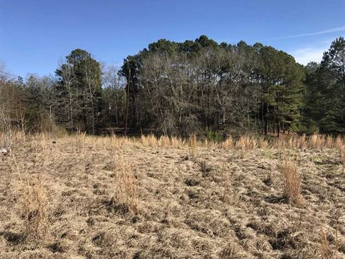 6 Acres With Pond, Timber And : Carrollton : Pickens County : Alabama