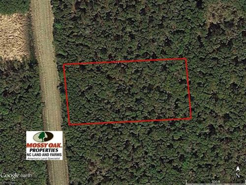 Under Contract,.5 Acre Resident : Engelhard : Hyde County : North Carolina