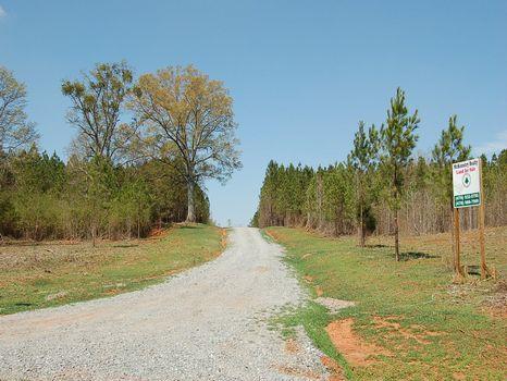 5 Acre Mini Farm, Deer, Turkey : Gray : Jones County : Georgia