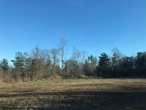 Perfect Lot To Build Dream Home : Madison : Morgan County : Georgia