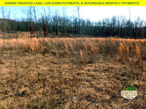 7 Acres, National Forest Access : Thornfield : Ozark County : Missouri
