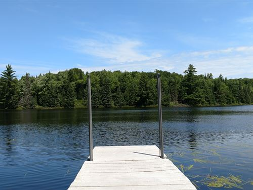 Beautiful Lot On Scenic Mud Lake : Presque Isle : Vilas County : Wisconsin