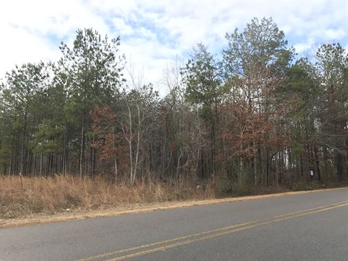 1.1+/- Acre Tract In Clay County : Lineville : Clay County : Alabama
