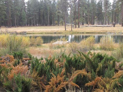 Williamson River Retreat : Chiloquin : Klamath County : Oregon