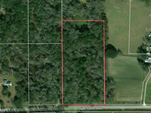 North Central Florida Land : Gainesville : Alachua County : Florida