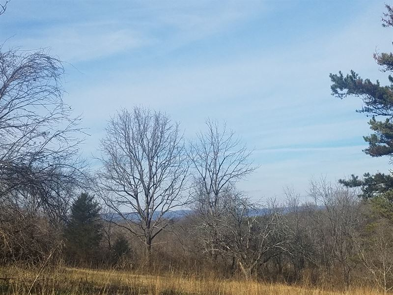 Single Or Multi-Family Building Lot : Morristown : Hamblen County : Tennessee