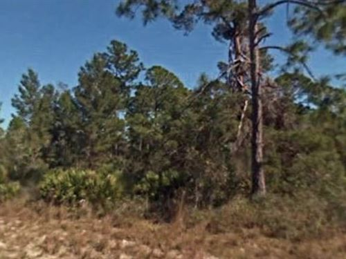 Highlands County, Fl $18,000 Neg : Lake Placid : Highlands County : Florida