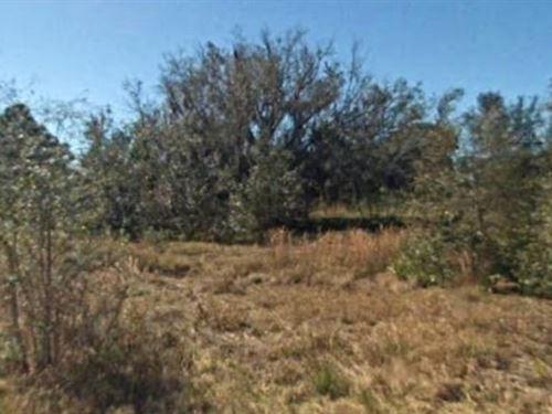 Highlands County, Fl $37,500 Neg : Sebring : Highlands County : Florida