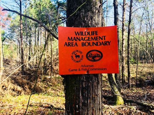 Wma Hot Spot, Buy 11 Acres, Hun : Highland : Sharp County : Arkansas