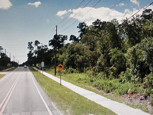 Homesite Acreage Or Multi-Use : Deltona : Volusia County : Florida