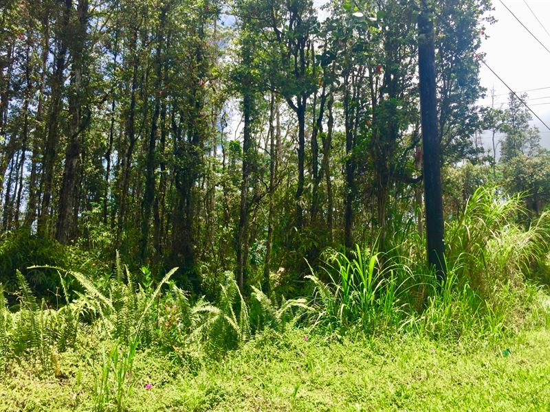Hawaii Big Island Land For Sale By Owner
