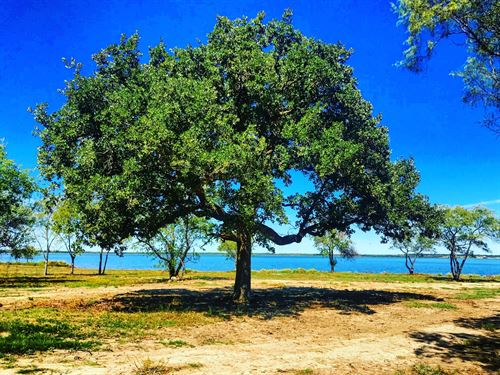 Dockable Lakefront Land Liquidation : Kemp : Kaufman County : Texas