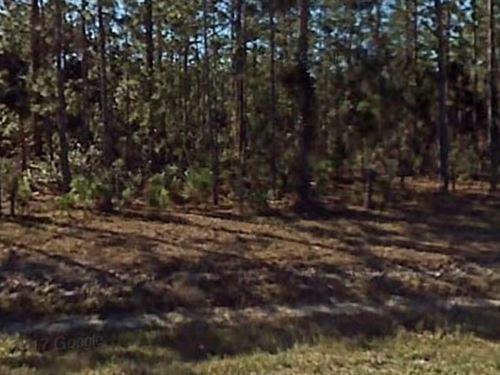 Polk County,Fl $12,000 Neg : Frostproof : Polk County : Florida