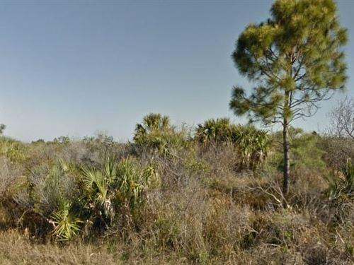 Brevard County, Fl $7,000 Neg : Sw Palm Bay : Brevard County : Florida